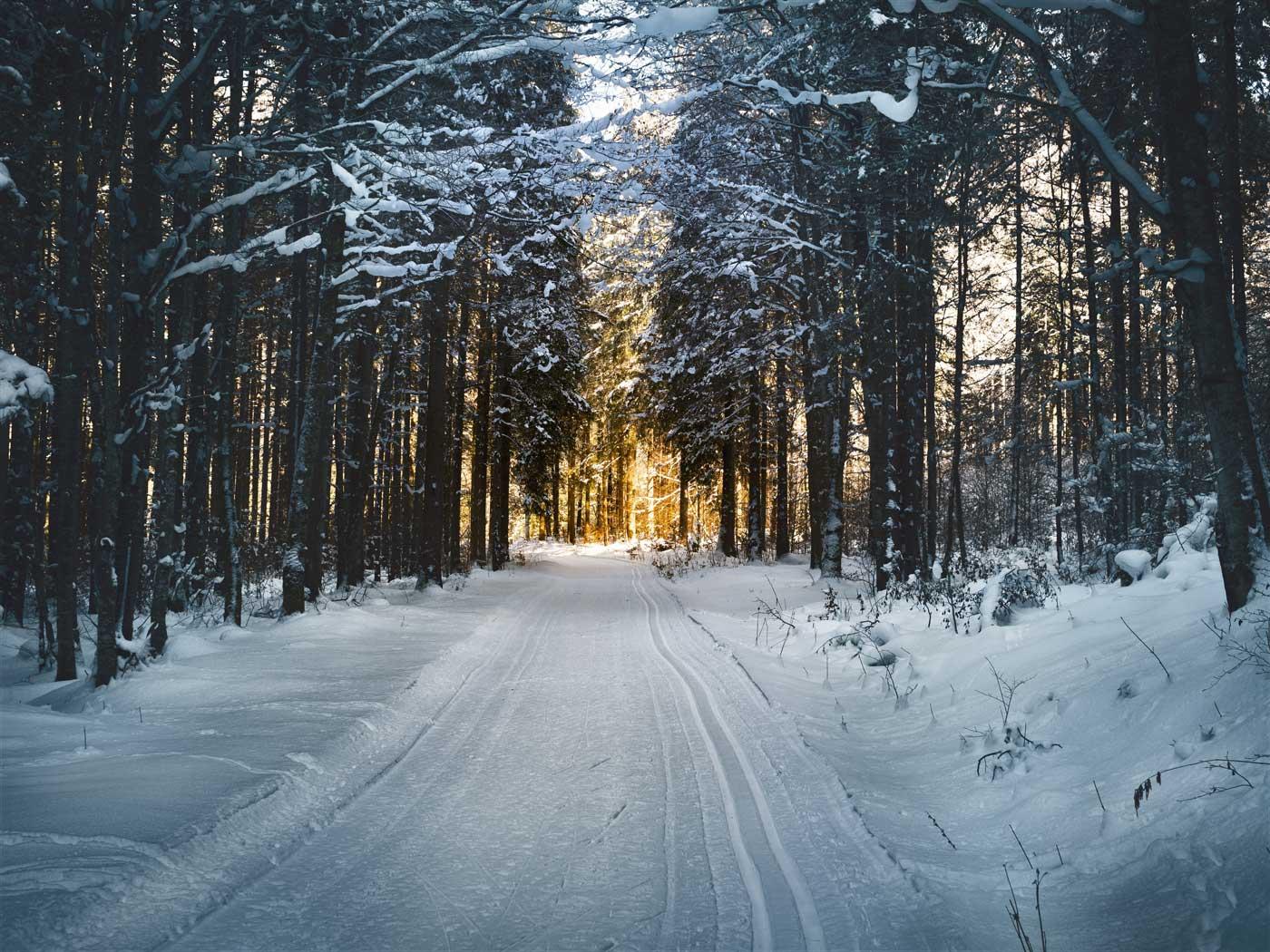 Reducerea de iarna